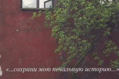Книги про Блокаду Ленинграда (35)