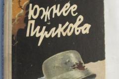 Южнее Пулкова